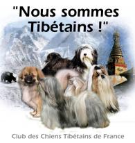 ban_tibet2.jpg